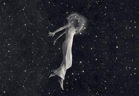 donna cosmo