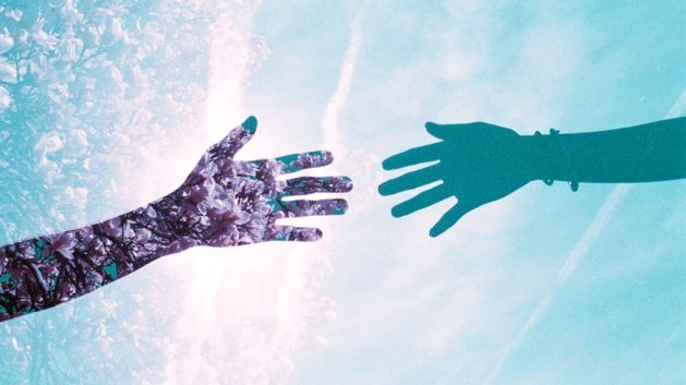 acquario mani.jpg