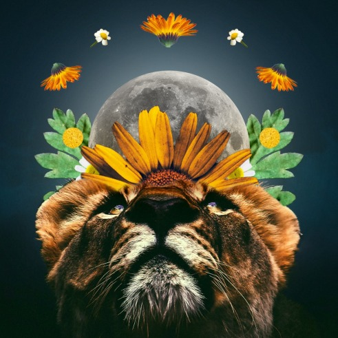 luna leone